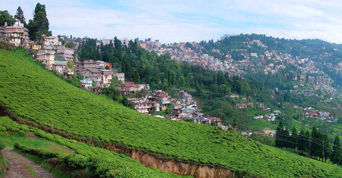 A view of Darjeeling from the Happy Valley Tea Estate