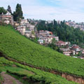 A view of Darjeeling